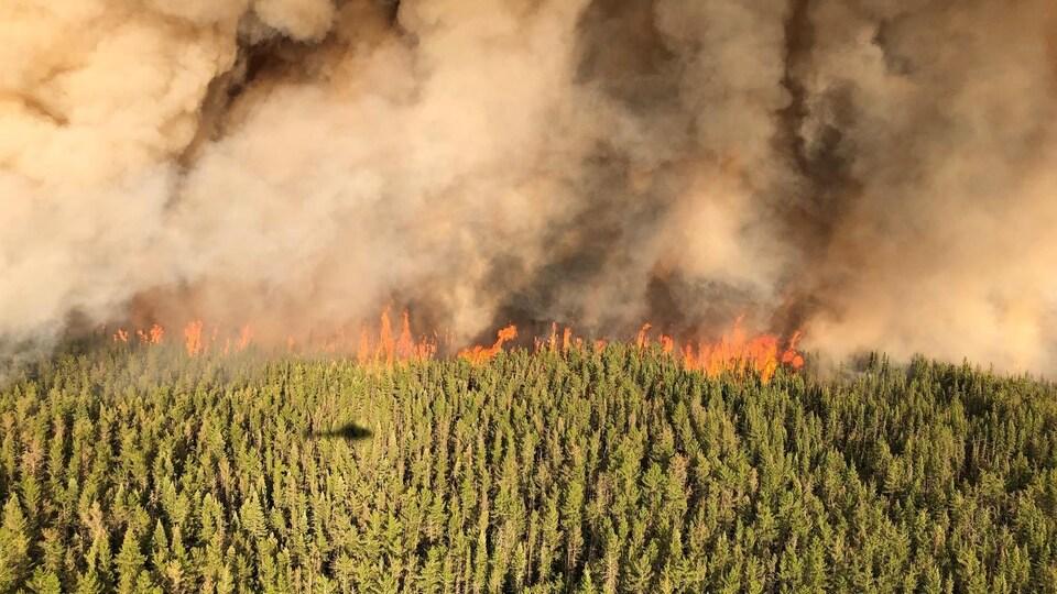 Une forêt vue de haut, avec une colonne horizontale de feu et de fumée qui avance rapidement.