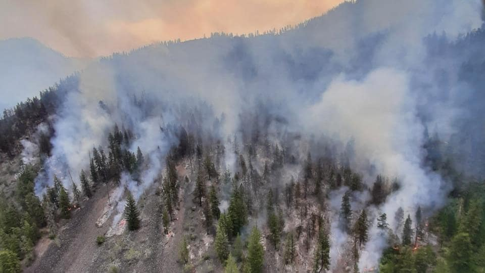 Des colonnes de fumées s'élancent du feu de forêt Bill Nye Mountain dans le sud-est de la Colombie-Britannique.