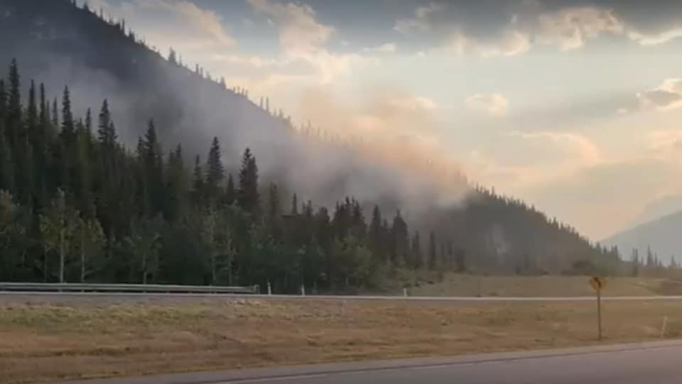 De la fumée émane d'un feu de forêt au bord d'une route.