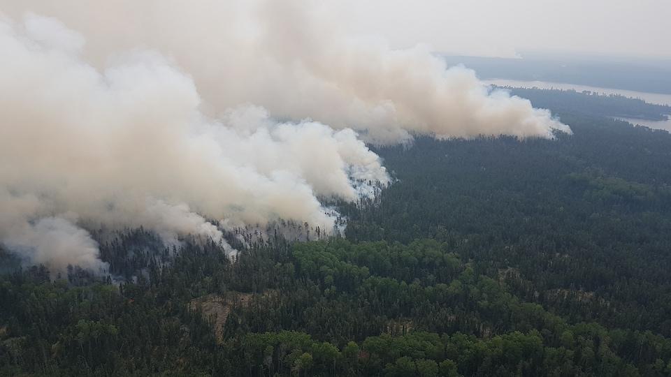 De la fumée s'échappe d'une forêt en feu.