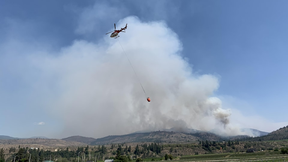 Un hélicoptère-citerne qui vole dans la fumée.