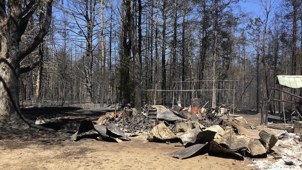 Des débris brûlés au sol dans la forêt.