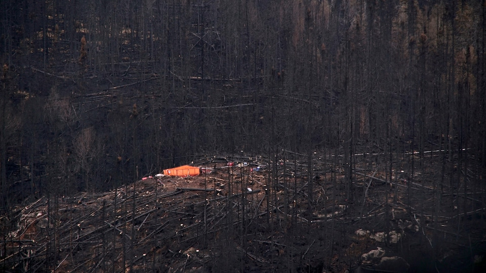 Une forêt brulée vue des airs avec du matériel de pompiers.