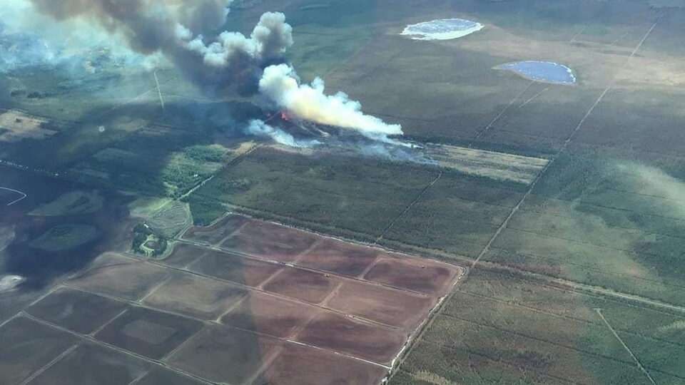 Photo vue aérienne d'un feu au milieu d'une forêt.