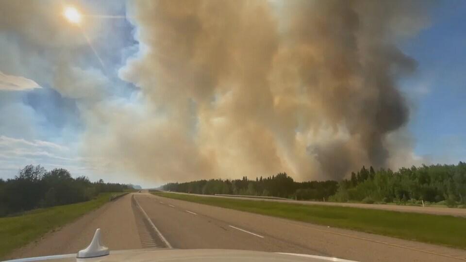 Des fumées sombre derrière une forêt qui se trouve sur le bord de la route.