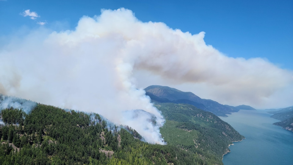 A plume of smoke comes out of the forest near a lake.