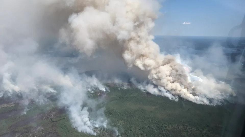 De la fumée se dégage d'une forêt.