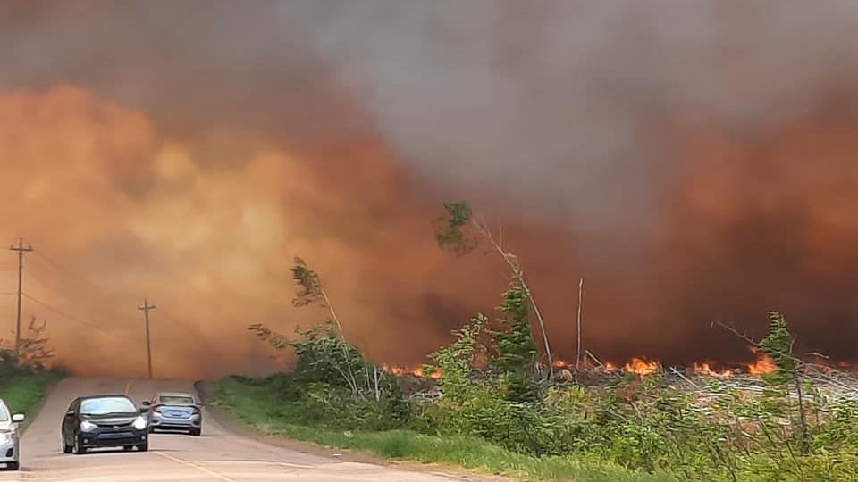 Des voitures près d'un feu de forêt.