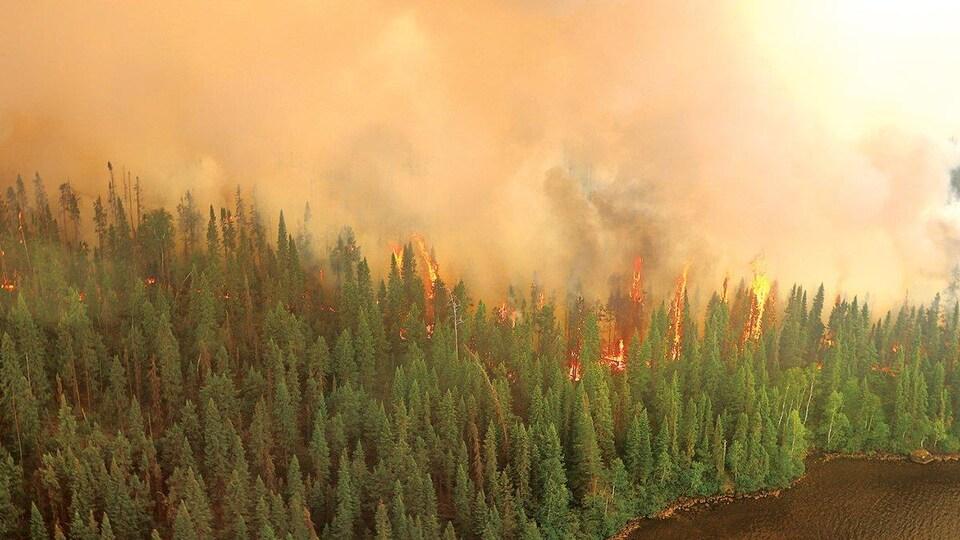 Un feu de forêt vu des airs.
