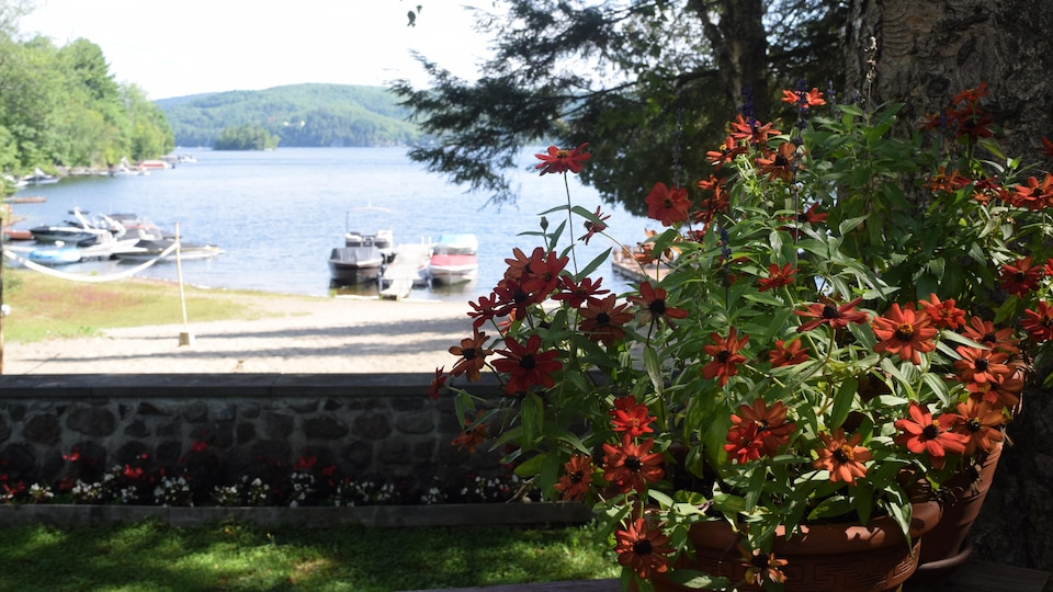 Paysage de bord de lac avec, à l'avant-plan, des pots remplis de fleurs, puis une plage et des quais avec des embarcations amarrées