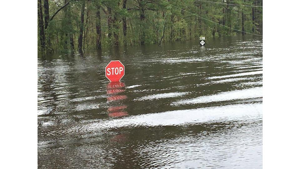 Le niveau de l'eau s'approche de la hauteur d'un panneau d'arrêt.