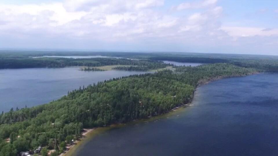 Des lacs et une forêt