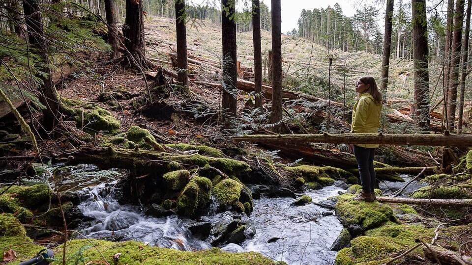 Une jeune femme se tient debout dans une forêt et regarde la nature.
