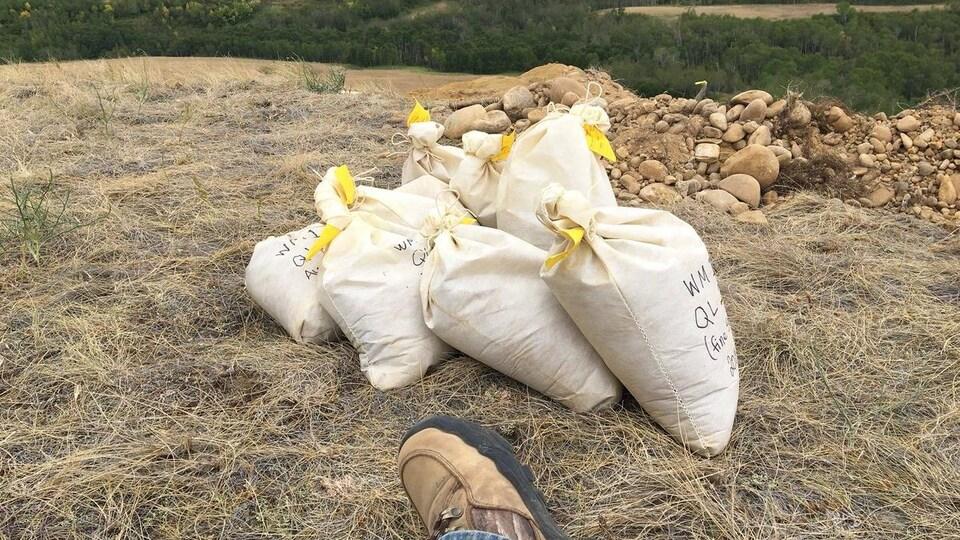 Sacs de fossiles amassés sur le haut d'une colline.
