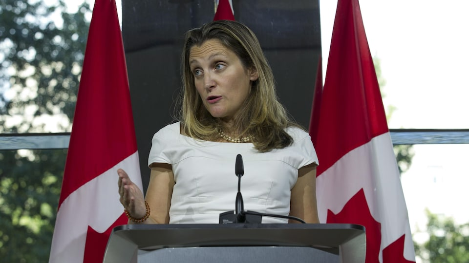 La ministre des Affaires étrangères, Chrystia Freeland, au cours d'un point de presse donné à l'ambassade canadienne à Washington.