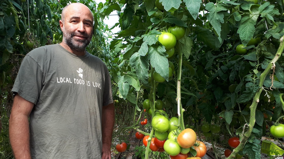 Frédéric Jobin-Lawler dans sa serre de tomates