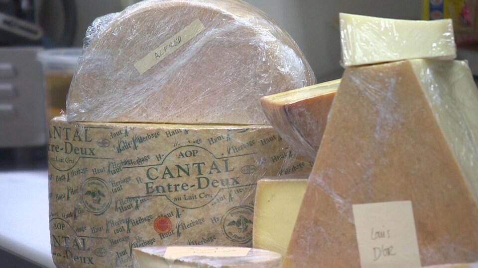 Des morceaux de fromages disposés sur une table.