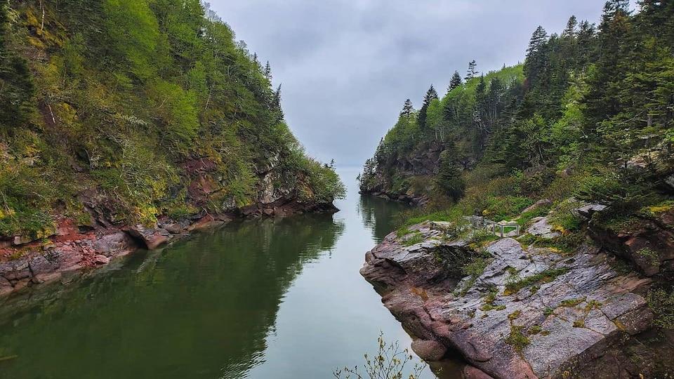 La mer entourée d'arbres et de rochers.