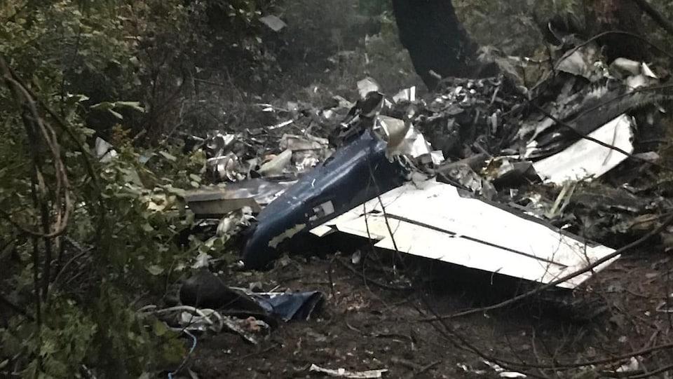 Un avion écrasé au sol.