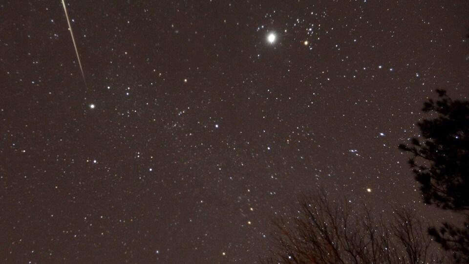 Un ciel plein d'étoiles, dont certaines filantes