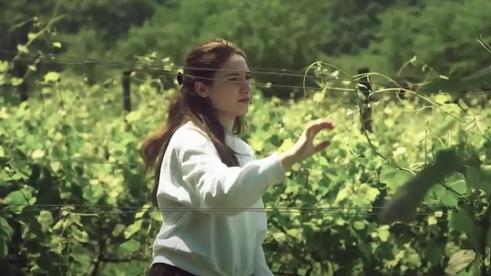 Mariam inspecte son champ de vignes.