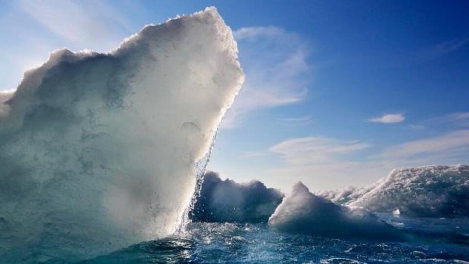 Glacier dans l'eau
