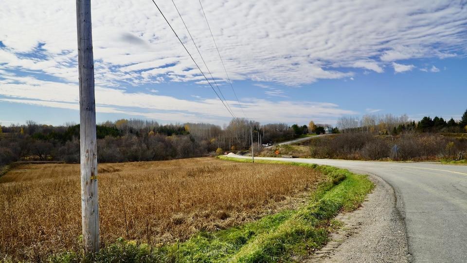 Une route de campagne serpente à travers une colline.