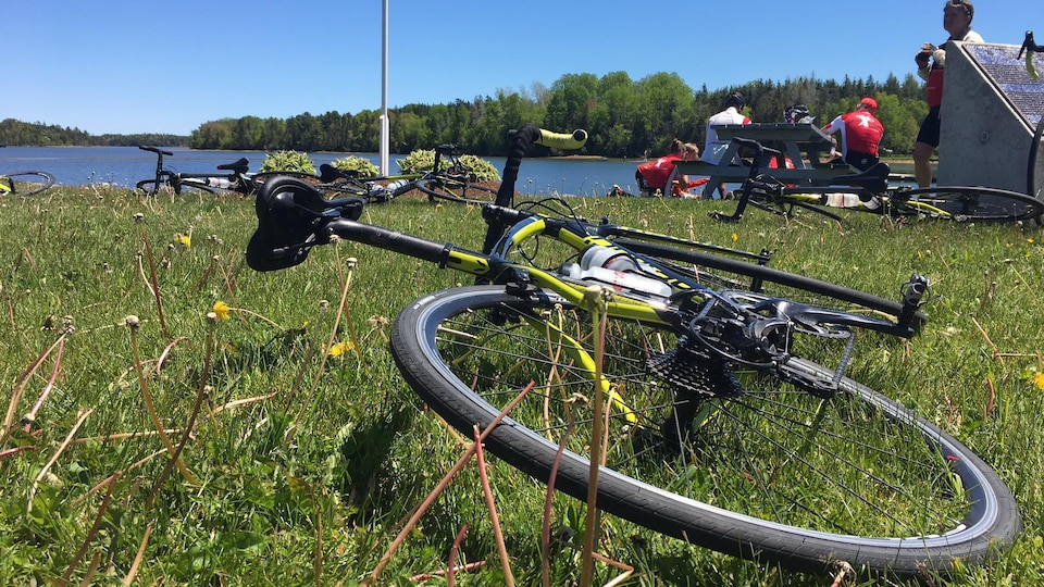 Un vélo dans l'herbe.