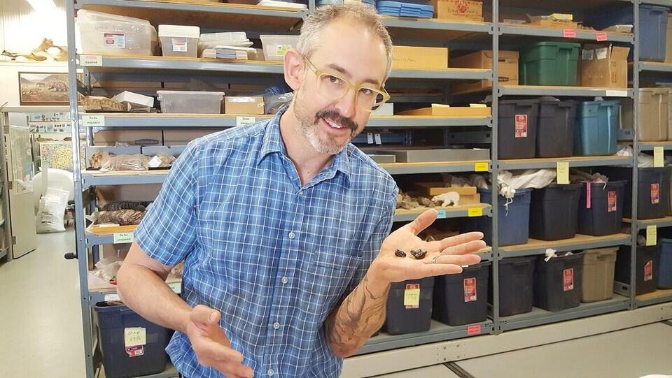 Grant Zazula tient les deux dents fossilisées dans sa main.