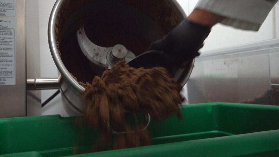 On voit tourner une machine qui transforme les grillons en farine.