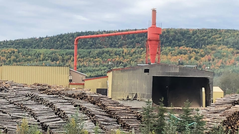 L'usine du Groupe Lebel à Squatec