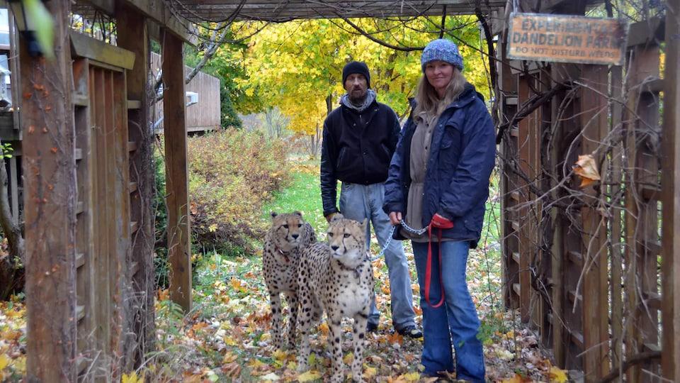 Earl Pfeifer et Carol Plato pose pour la caméra à l'extérieur avec deux guépards à leurs côtés.