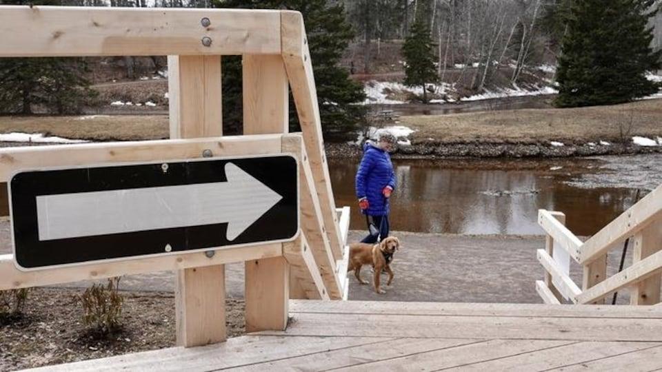 Une femme et un chien marche dans un parc. Un pont avec une flèche orientant vers la droite est cloué sur le bois.