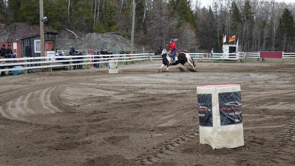 Un cavalière course avec son cheval dans un circuit de barils.