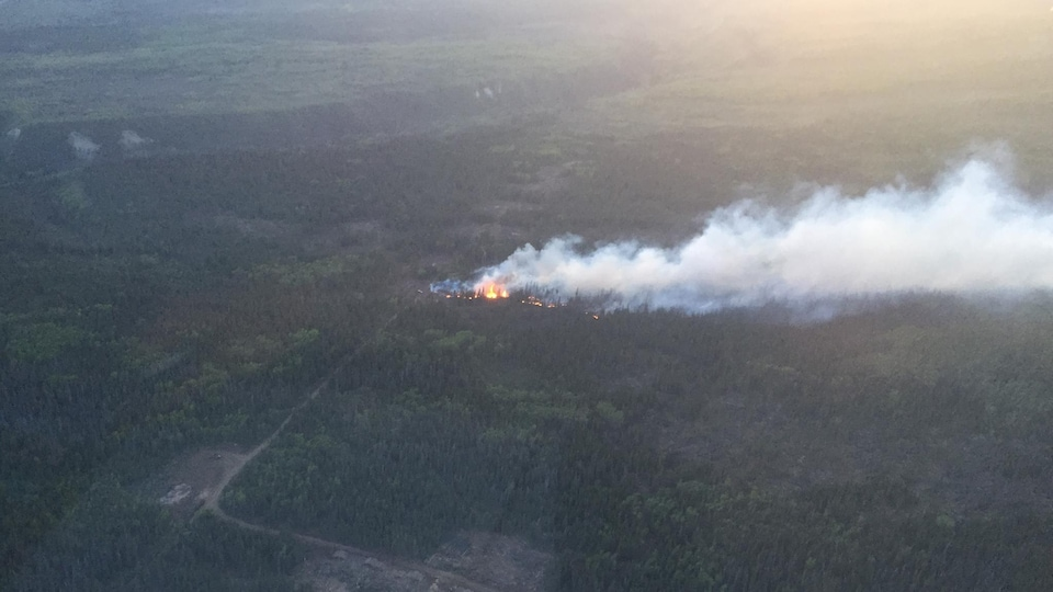 Un panache de fumée et des flammes de l'incendie de forêt de Haines Junction sont aperçus depuis la hauteur d'un avion.