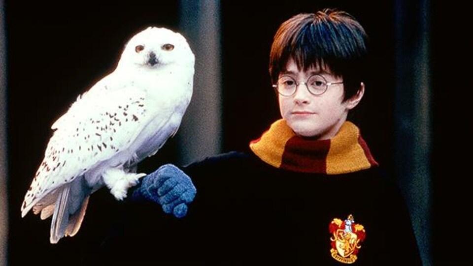 Harry Potter avec Hedwidge.