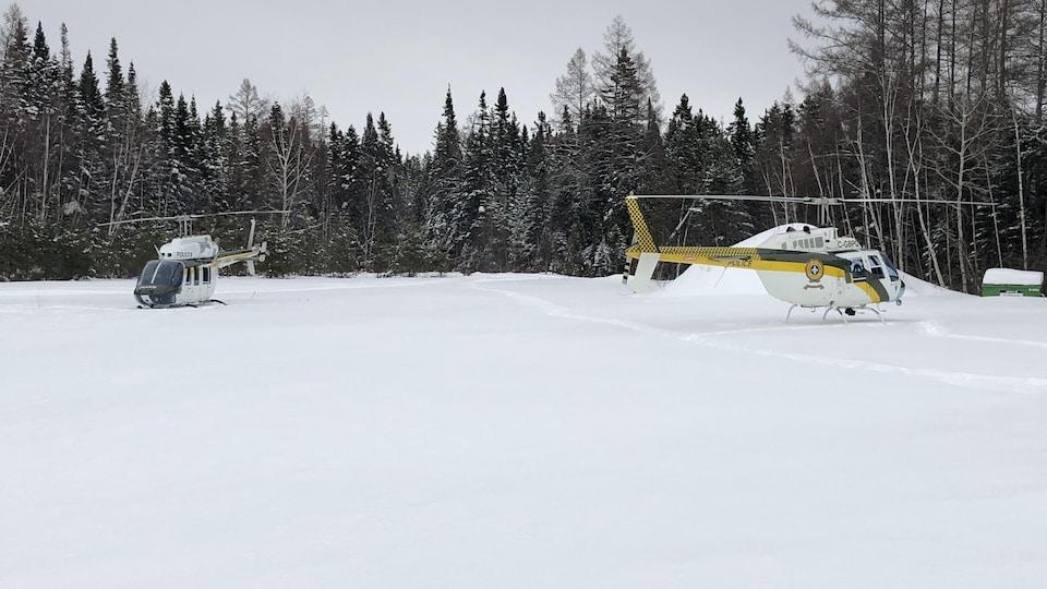 Deux hélicoptères dans un champ.