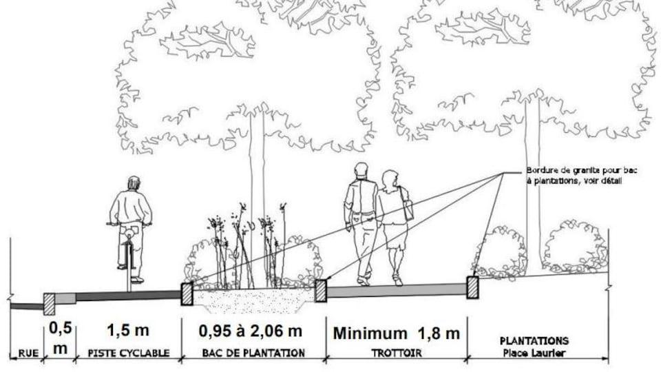 Croquis du schéma du boulevard Hochelaga, incluant piste cyclable et bac de plantation.