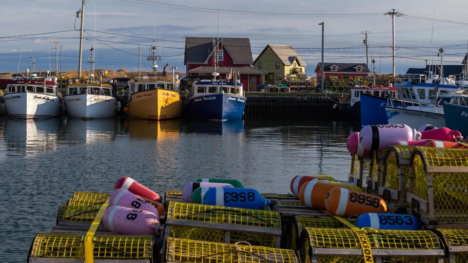 Des cages à homard et des bateaux à quai dans la lumière du soleil levant.