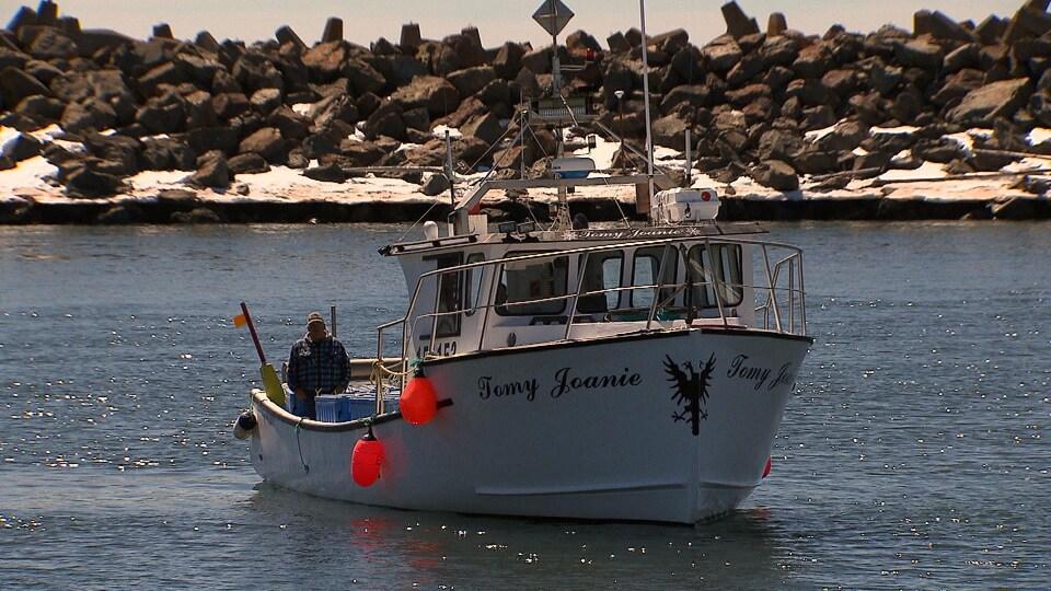 Un bateau dans un have de pêche.