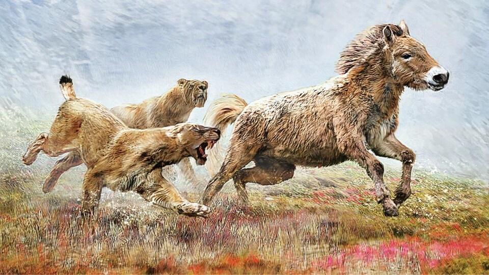 Un chat à dents de sabre chassant un cheval.