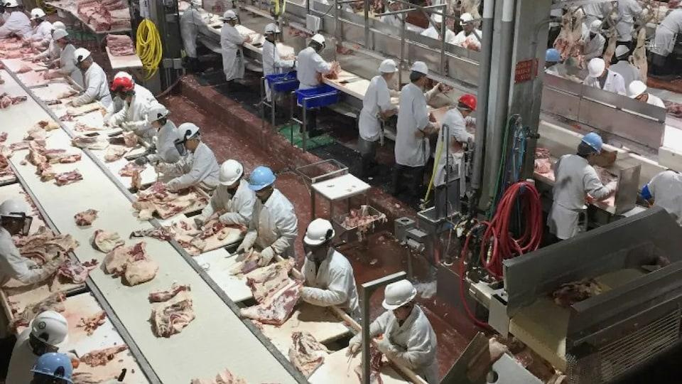 Les employés de l'usine de transformation de viande Cargill en train de désosser des morceaux de bœuf.