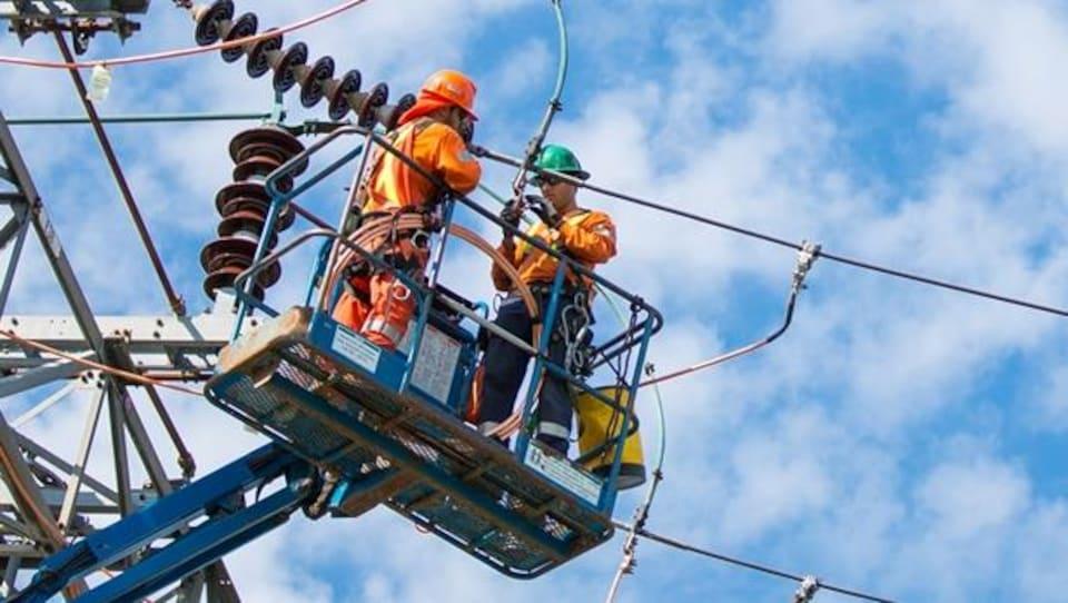 Photo de travailleurs effectuant des travaux de réparation de lignes électriques.