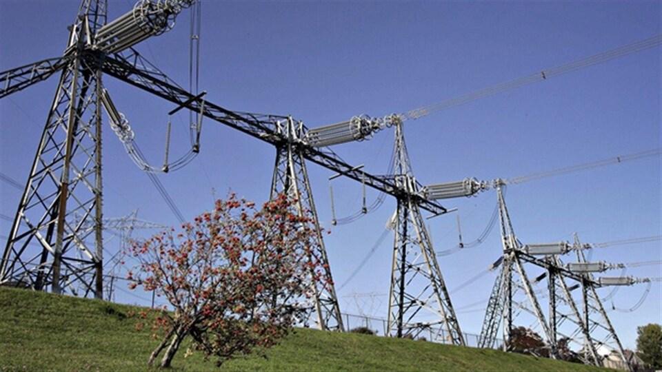 Des lignes de transport d'électricité à Churchill Falls.