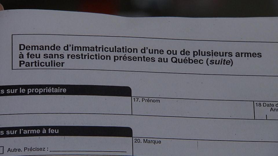 Une page du formulaire du gouvernement du Québec pour l'immatriculation d'une arme à feu.