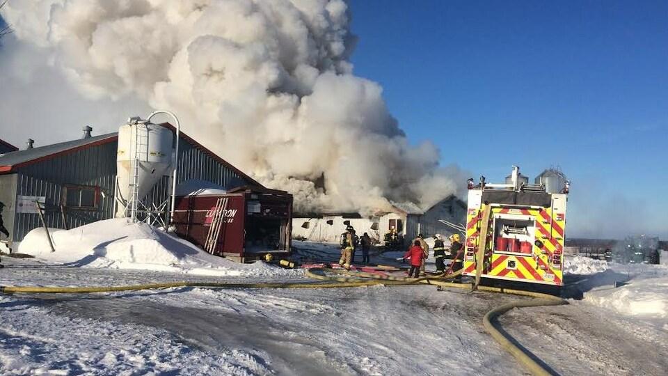 Un incendie a complètement ravagé lundi une porcherie de la ferme Turlo à Saint-Gervais, dans Bellechasse.