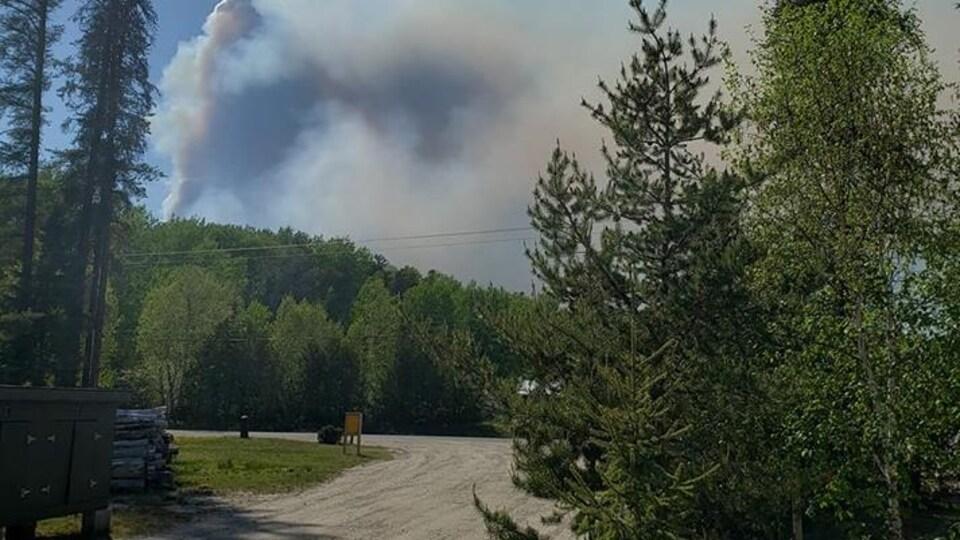 Des arbres et la fumée au loin près d'une route rurale.