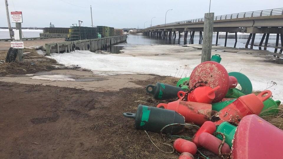 Des bouées avec en arrière-plan le quai et des glaces sur la côte.