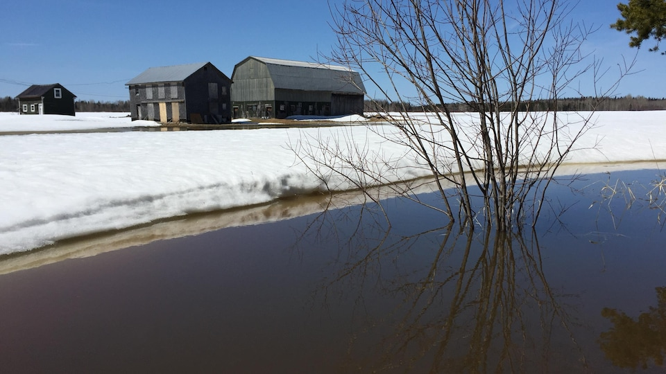 Les champs sont inondés.