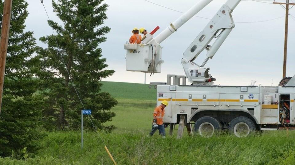 Des techniciens qui réparent des pannes électriques à l'extérieur. Ils portent des équipements de sécurité.